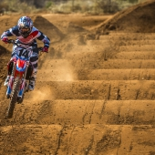 cole-seely-lowres1