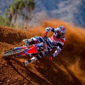 cole-seely-lowres2