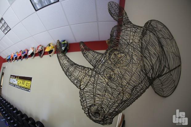 Le rhinocéros est le symbole de Ryan Hughes. © Stéphan Legrand/LBU